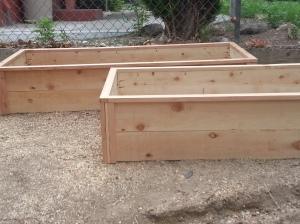 Rasied Cedar Box Garden