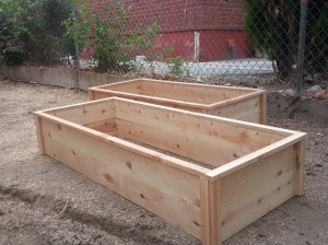 Raised Cedar Box Garden 2
